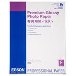 Epson C13S042091 Fotopapier Premium Glossy