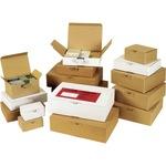 ratioform Versandkarton Blitzbox Innenmaße: 10,7 x 6 x 14,5 cm (B x H x T) Wellpappe 1-wellig braun