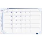 Legamaster Monatsplaner Accents Linear Cool 90 x 60 cm (B x H) inkl. Zubehörset TZ 111 4 Boardmarkern, Magnetische Symbole Kunststoff blau
